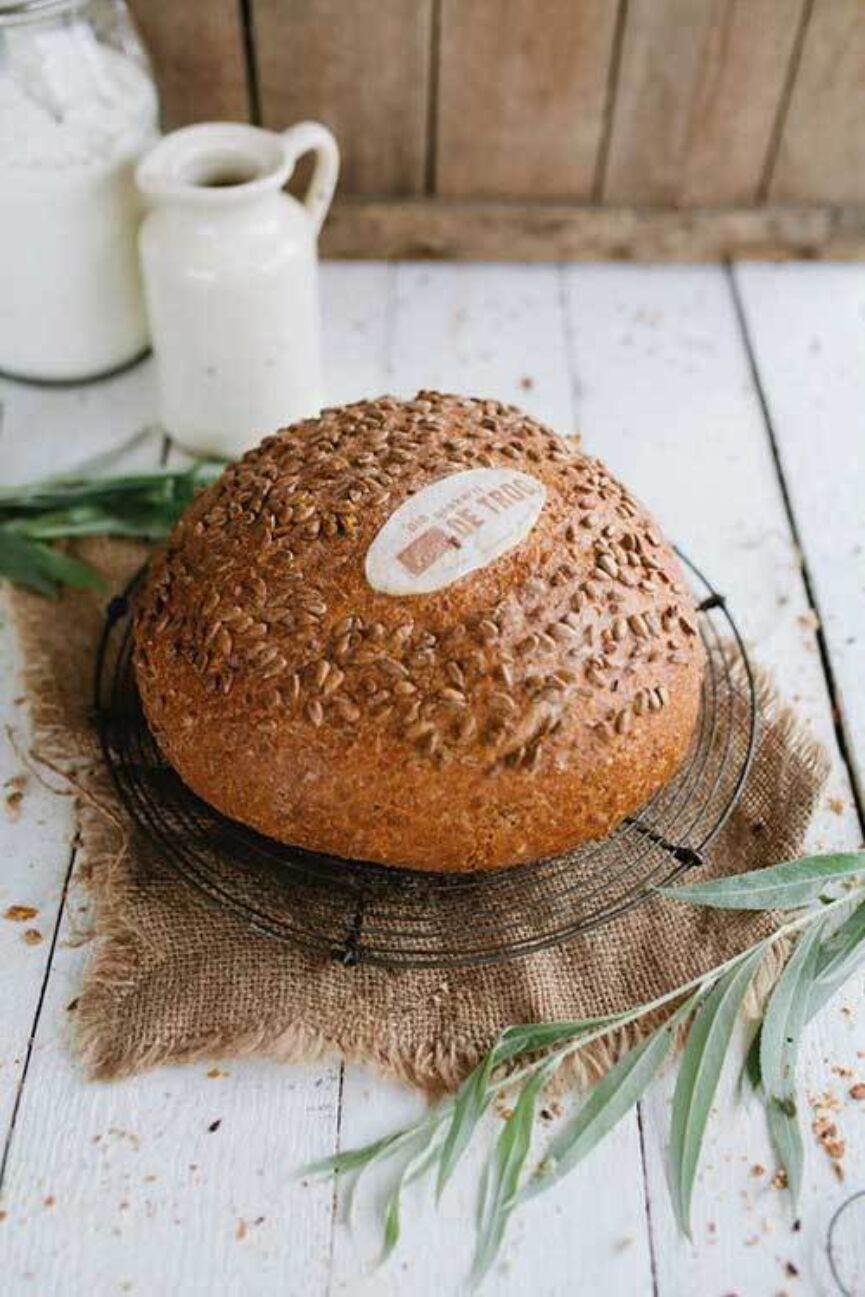 Ep0116 De Trog Zonnepitbrood 2